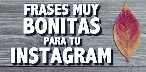 Frases Muy Bonitas Para Tu Perfil De Instagram